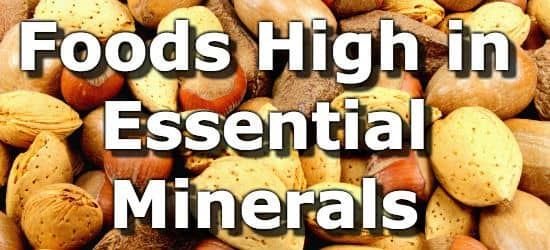 Food High Magnesium Potassium