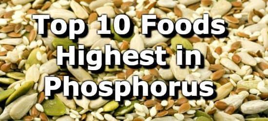 Leucine Foods List