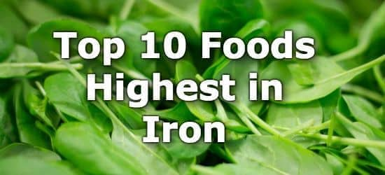 Top 10 Foods Highest in Iron You Can't Miss